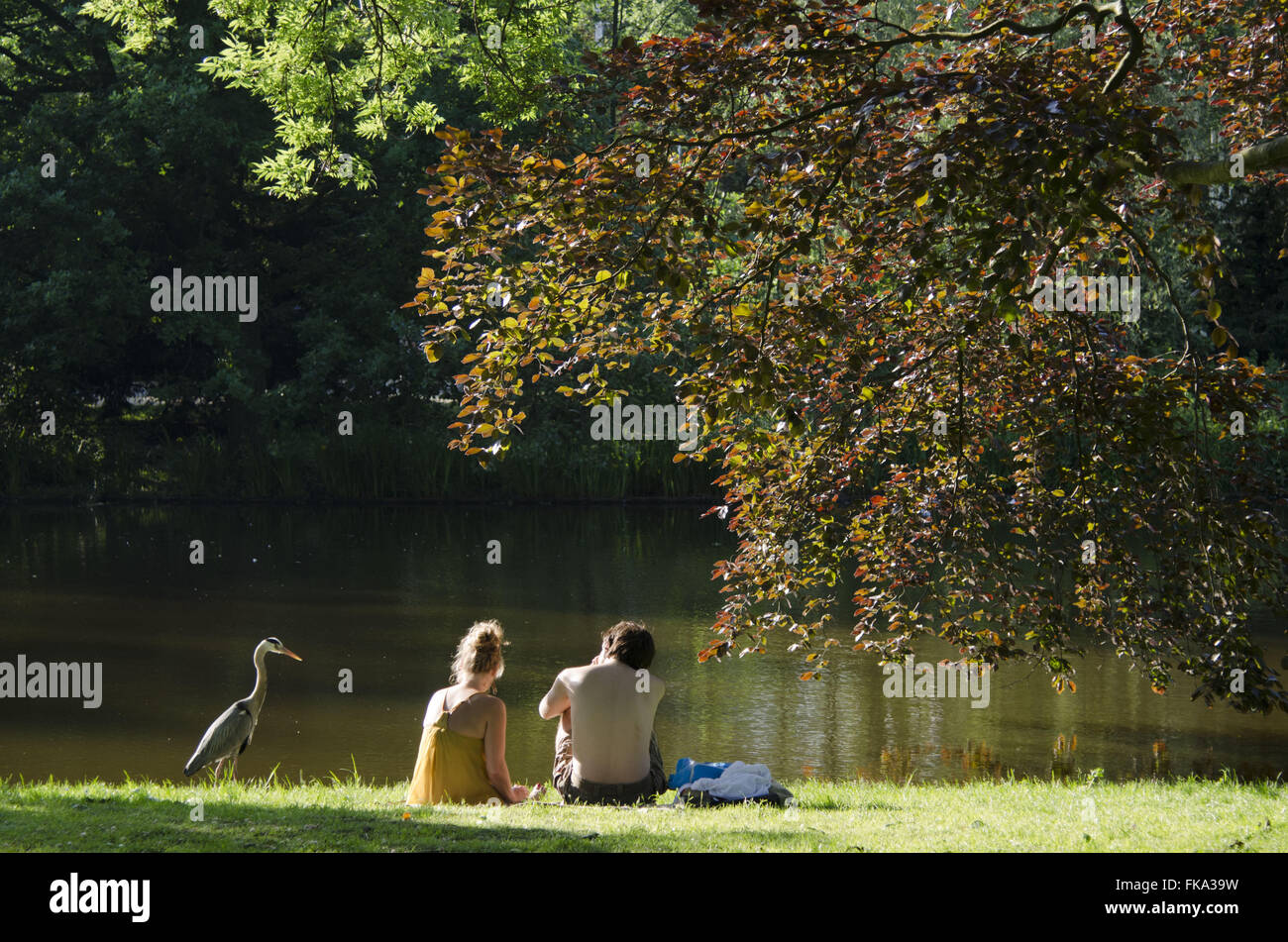 Couple of lovers in the Vondelpark on a hot day - southern city - Stock Image