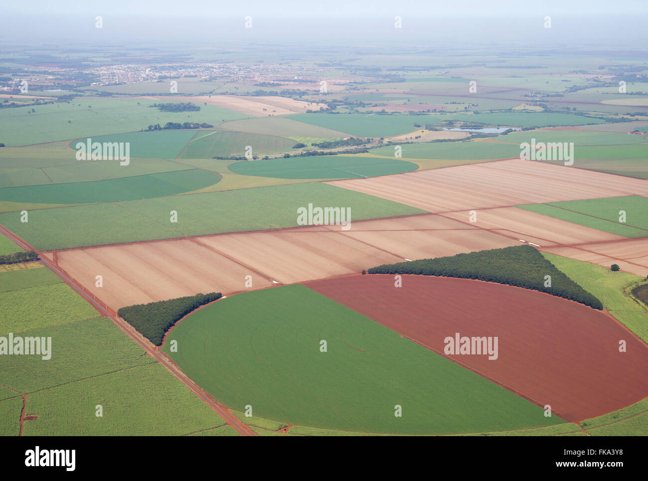 Aerial view of plantation of maize under central pivot irrigation - Stock Image