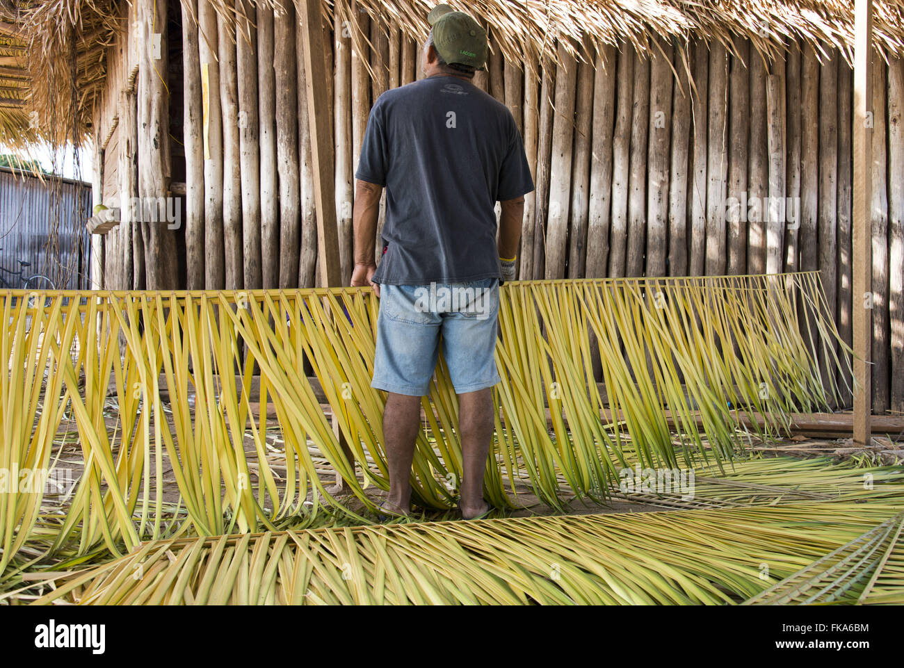 Worker puts coverage kiosk with Curuá-Pixuna straw in Alter do Chao - Stock Image