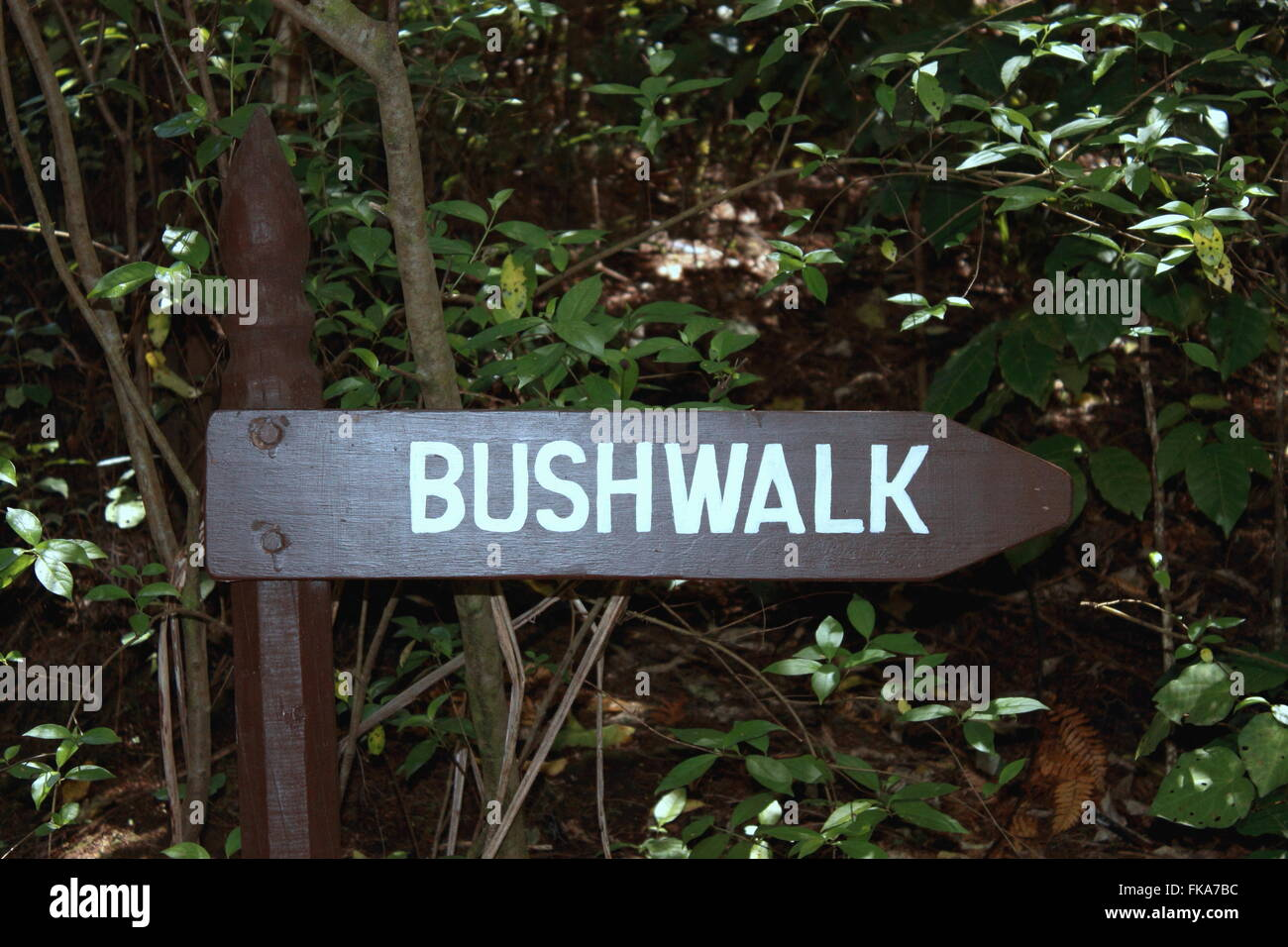 Bush Walk Sign - Stock Image