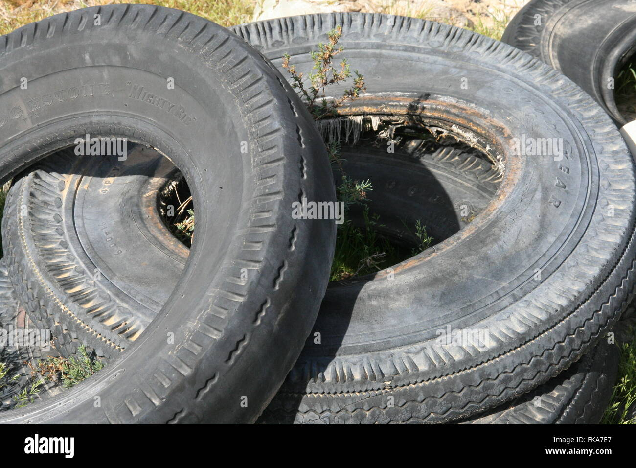 Sundried Tires - Stock Image