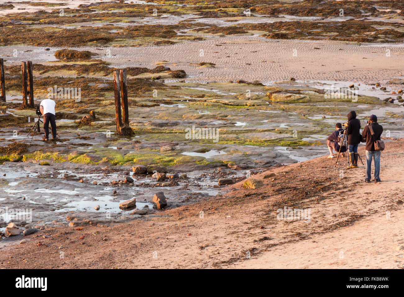 Photographers on the Rocks at St Mary's Island in the low evening warm light, Whitley Bay, Tyne and Wear, UK - Stock Image