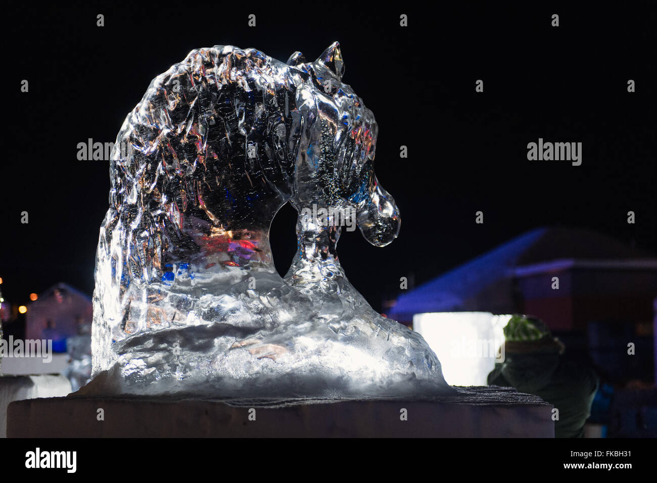 Horse Head Ice Carving Sculpture In Alta Norway The Carvings Were Stock Photo Alamy