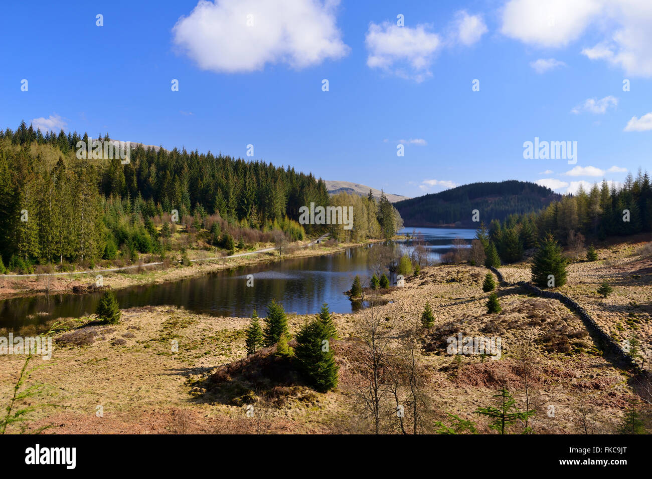 Loch Drunkie, Achray Forest Drive, Trossachs, Scotland, UK