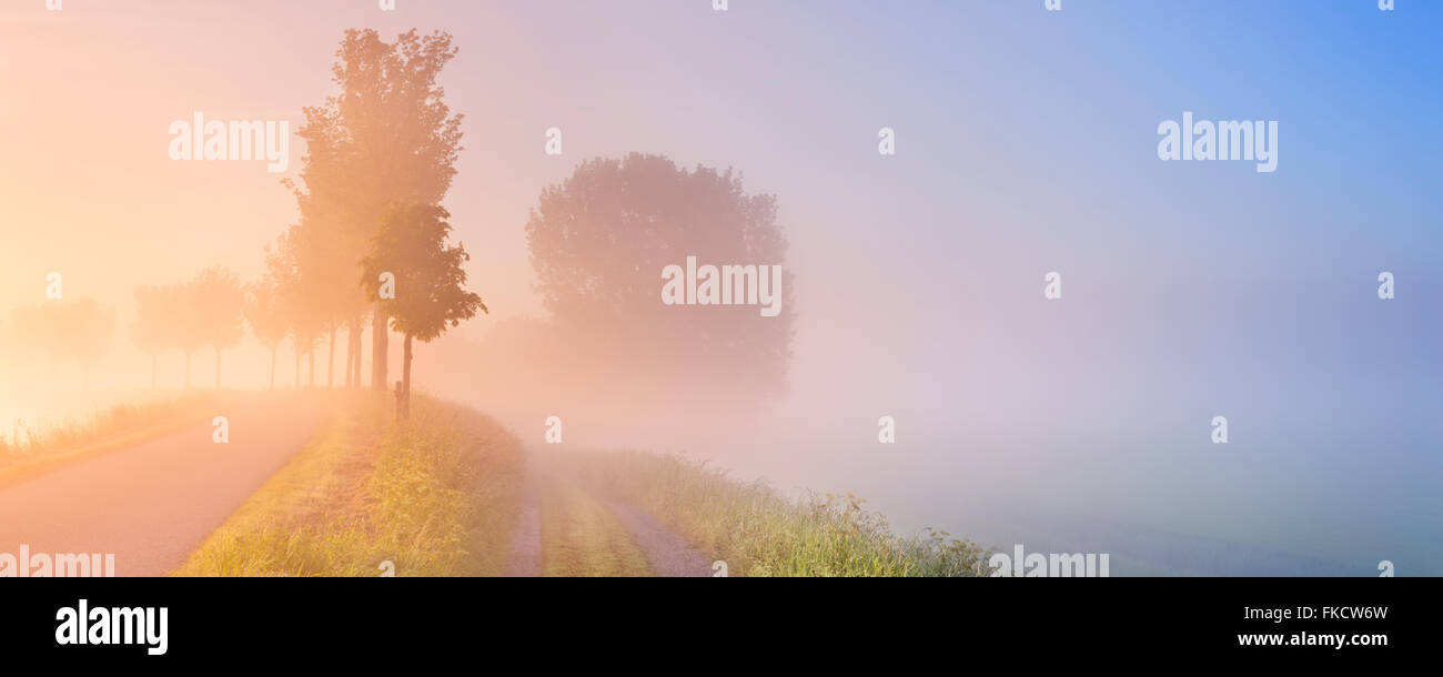 A foggy sunrise in typical polder landscape in the Beemster in The Netherlands. - Stock Image
