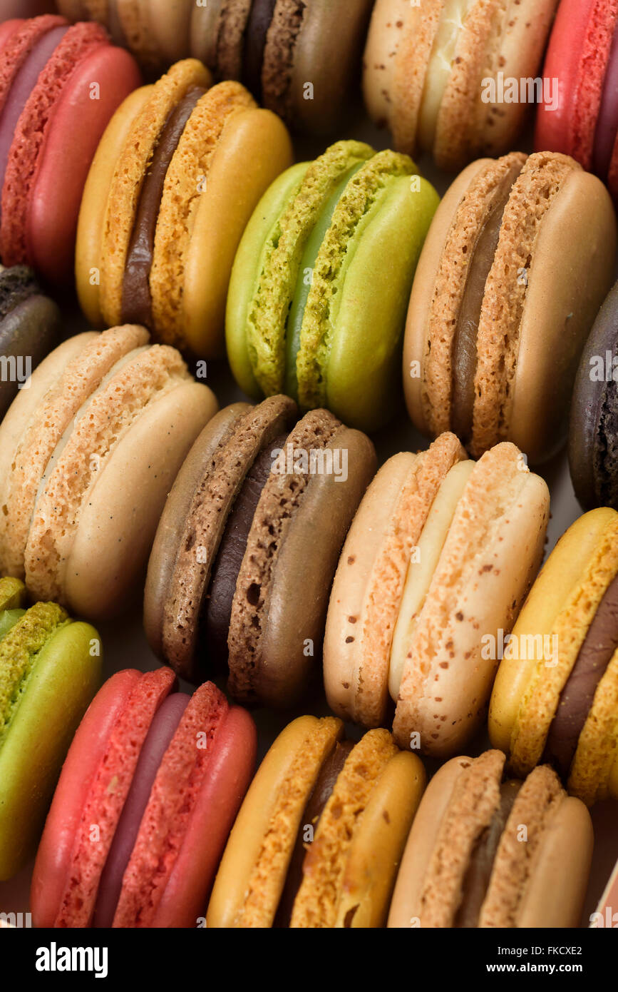 Multi colored macaroons Stock Photo