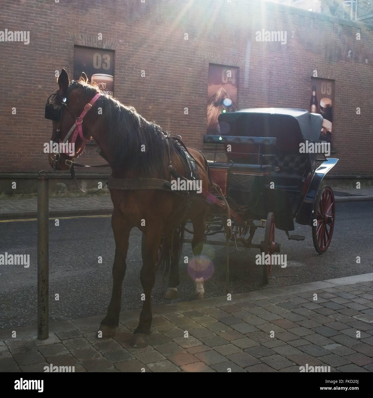 Horse drawn carriage waiting for tourists outside the Guinness Storehouse, Dublin, Ireland - Stock Image
