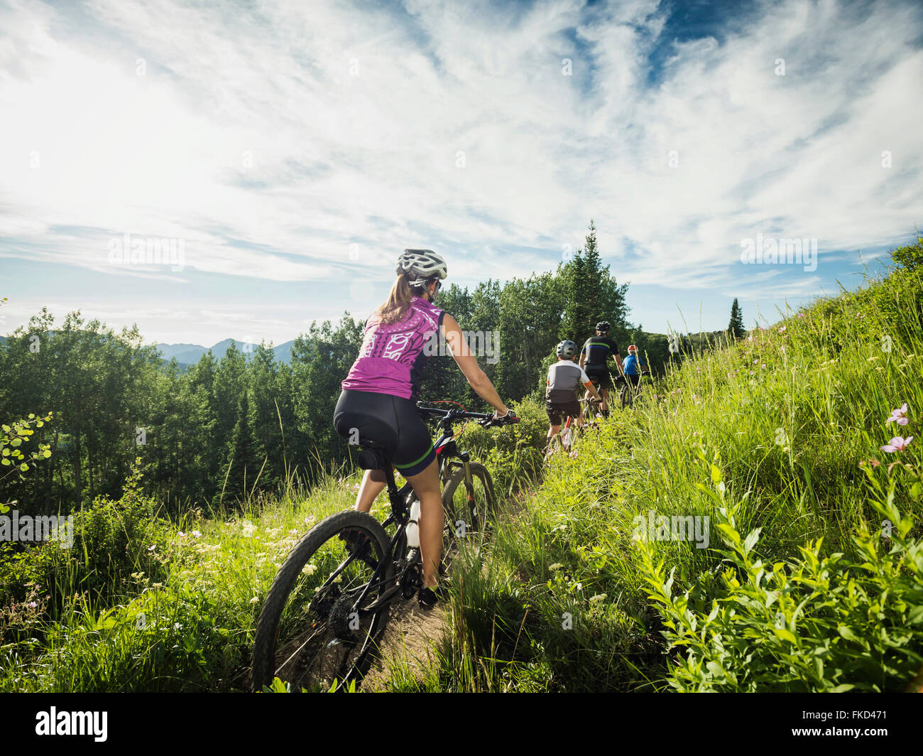 Family with children ( 10-11, 12-13) cycling in mountains - Stock Image