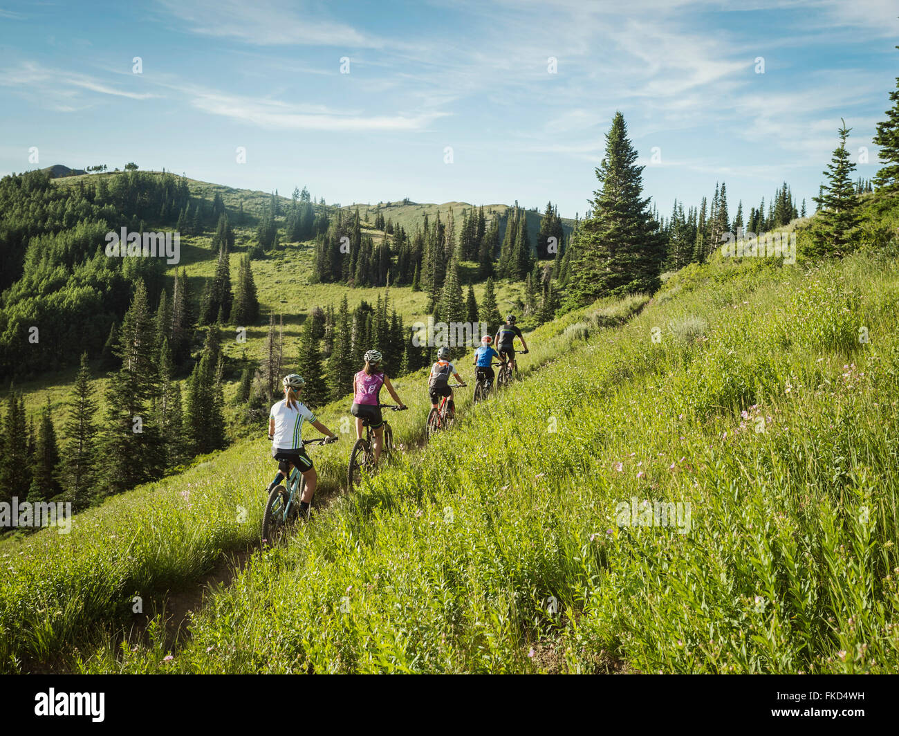 Parents with children (10-11,12-13, 14-15) during bike trip - Stock Image