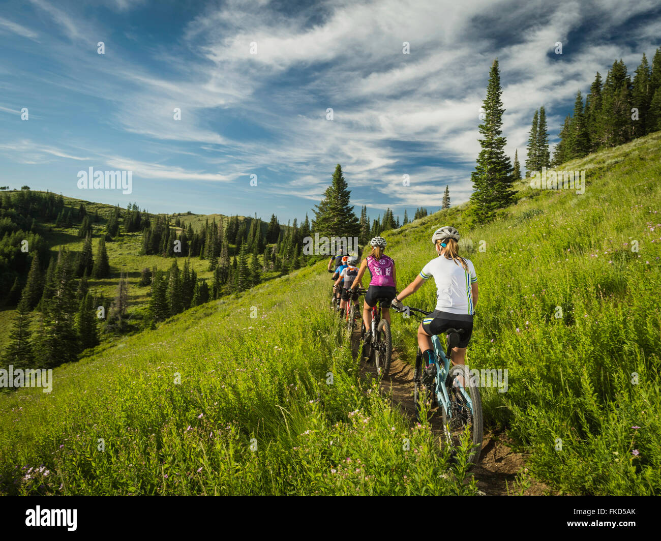 Parents with children (10-11,12-13, 14-15) during bike trip Stock Photo