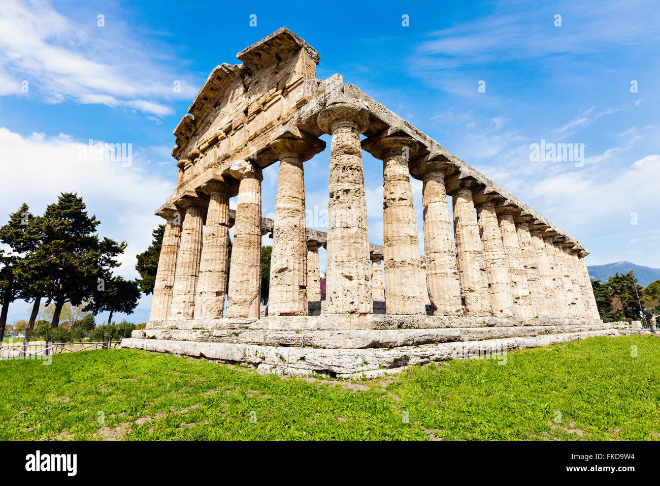 Old architectural columns of Paestum ruins on grass - Stock Image