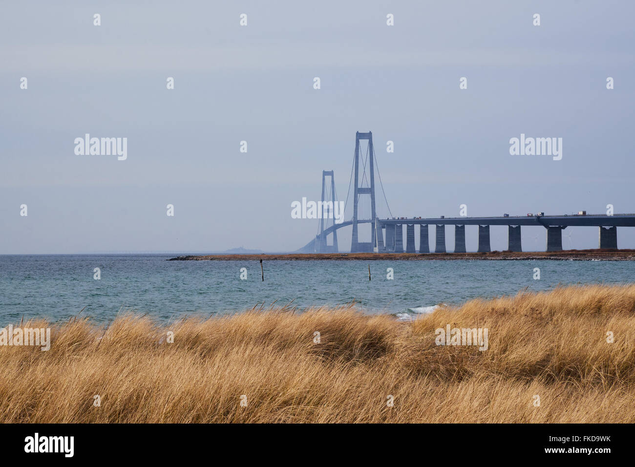 Great belt bridge seen from the Sealand side with grassy coastline in the front - Stock Image