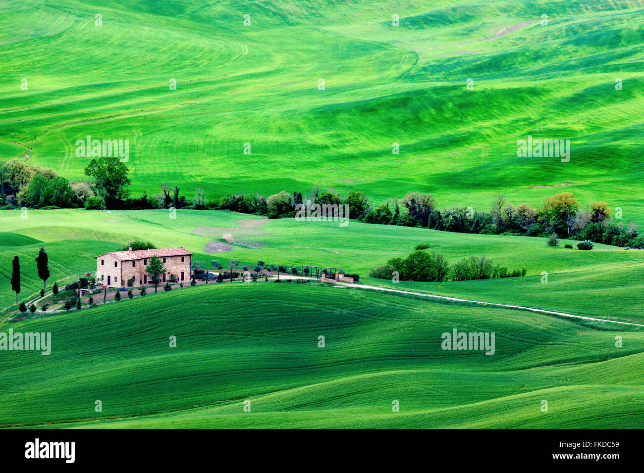 Green rolling landscape with farmhouse - Stock Image