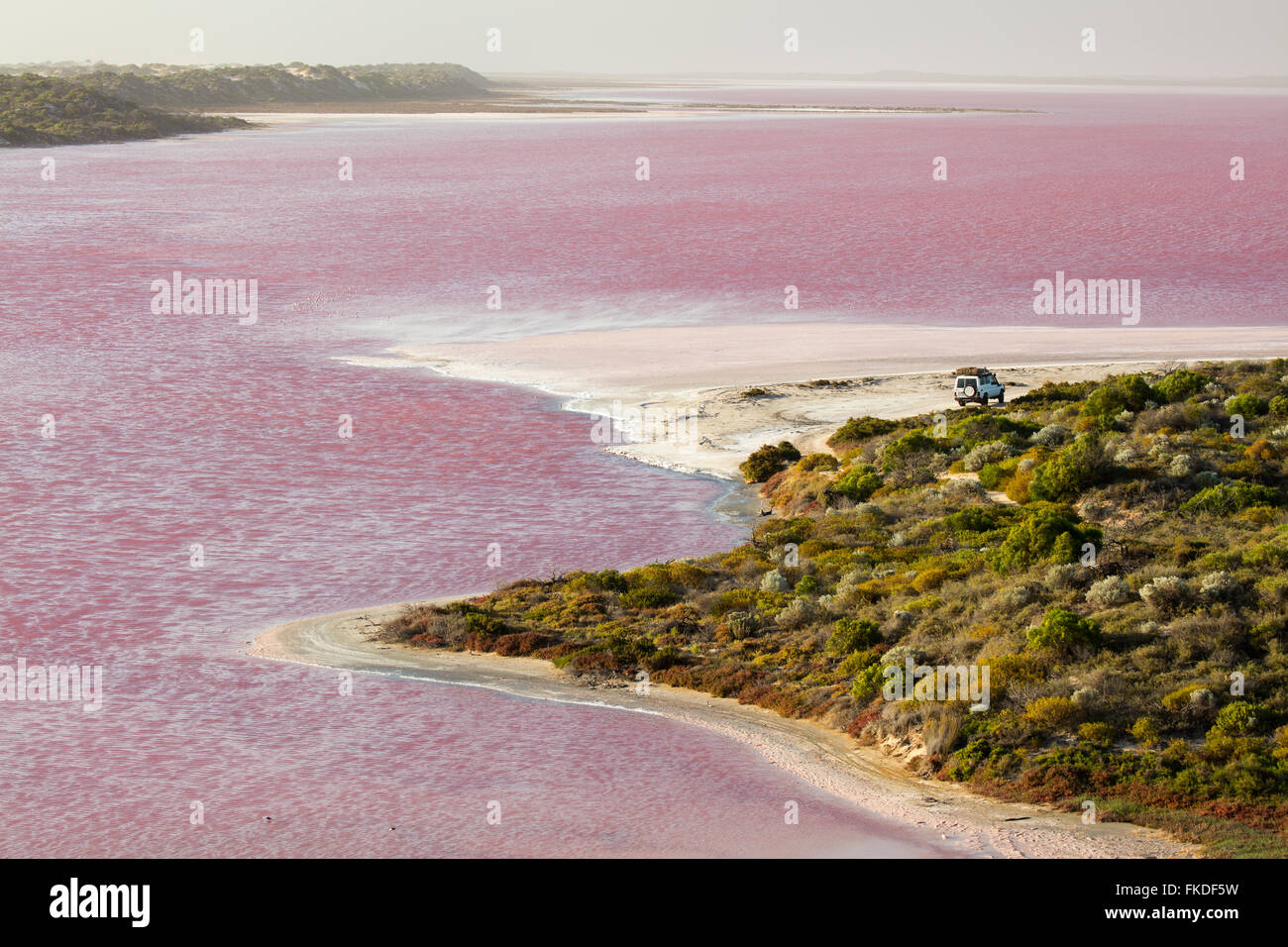 the troopy on the shores of the pink Hutt Lagoon at Port Gregory, West Australia - Stock Image