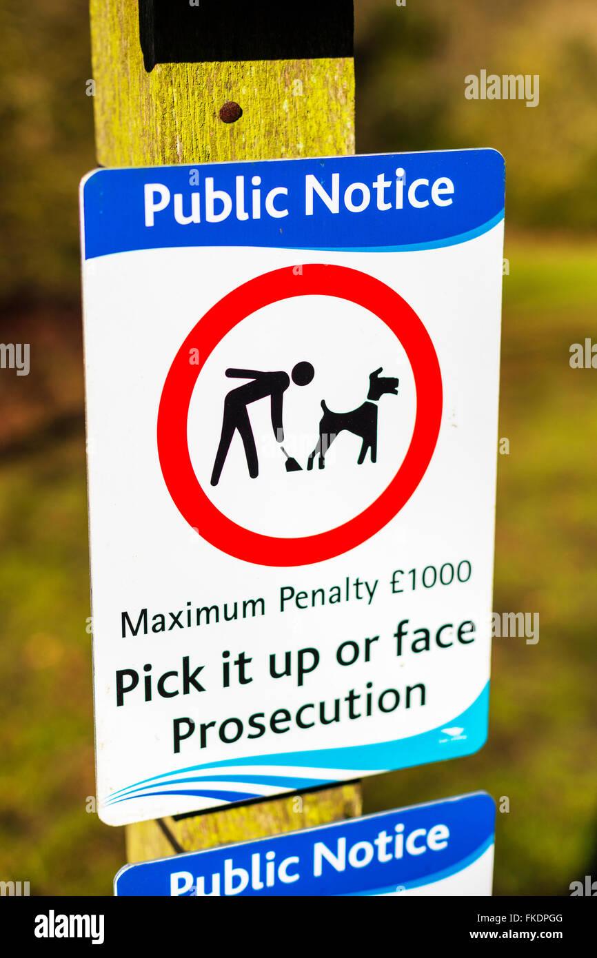 Pick up dog poo sign public notice maximum penalty fine face prosecution UK - Stock Image