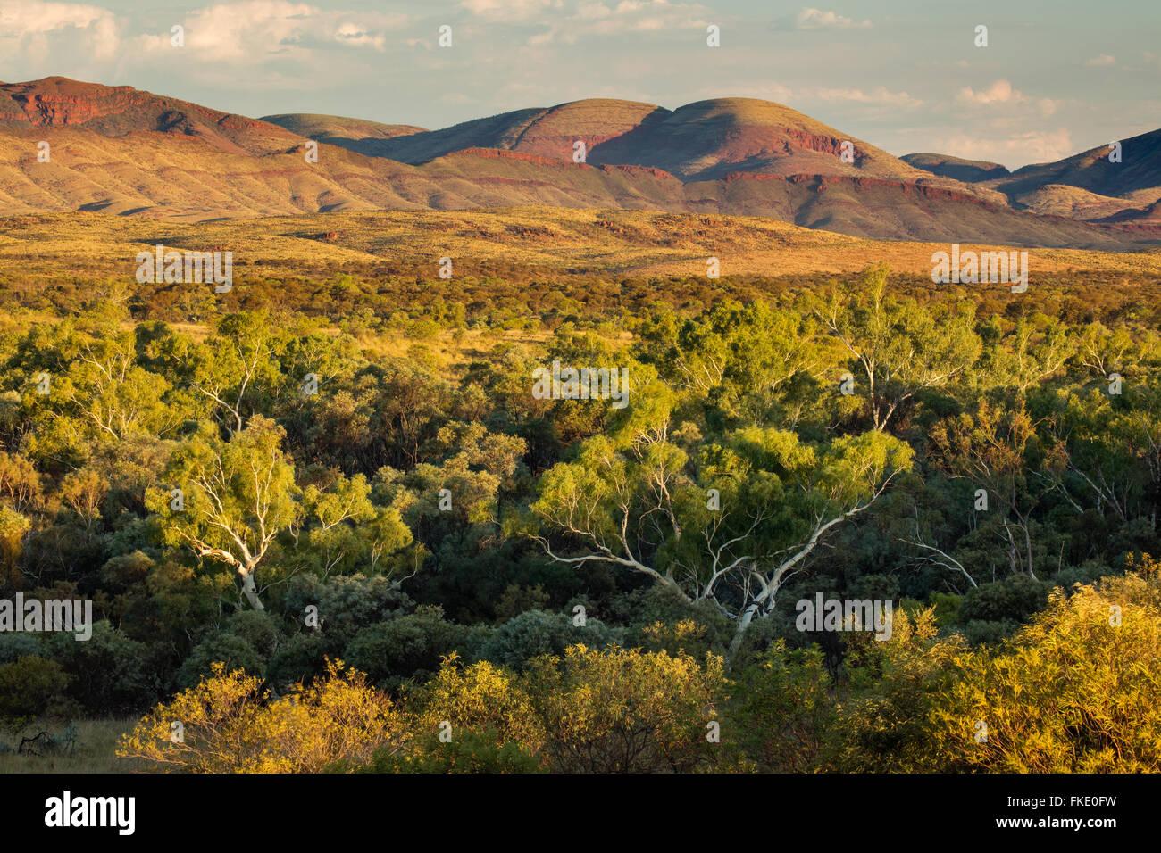 Pilbara, Western Australia - Stock Image