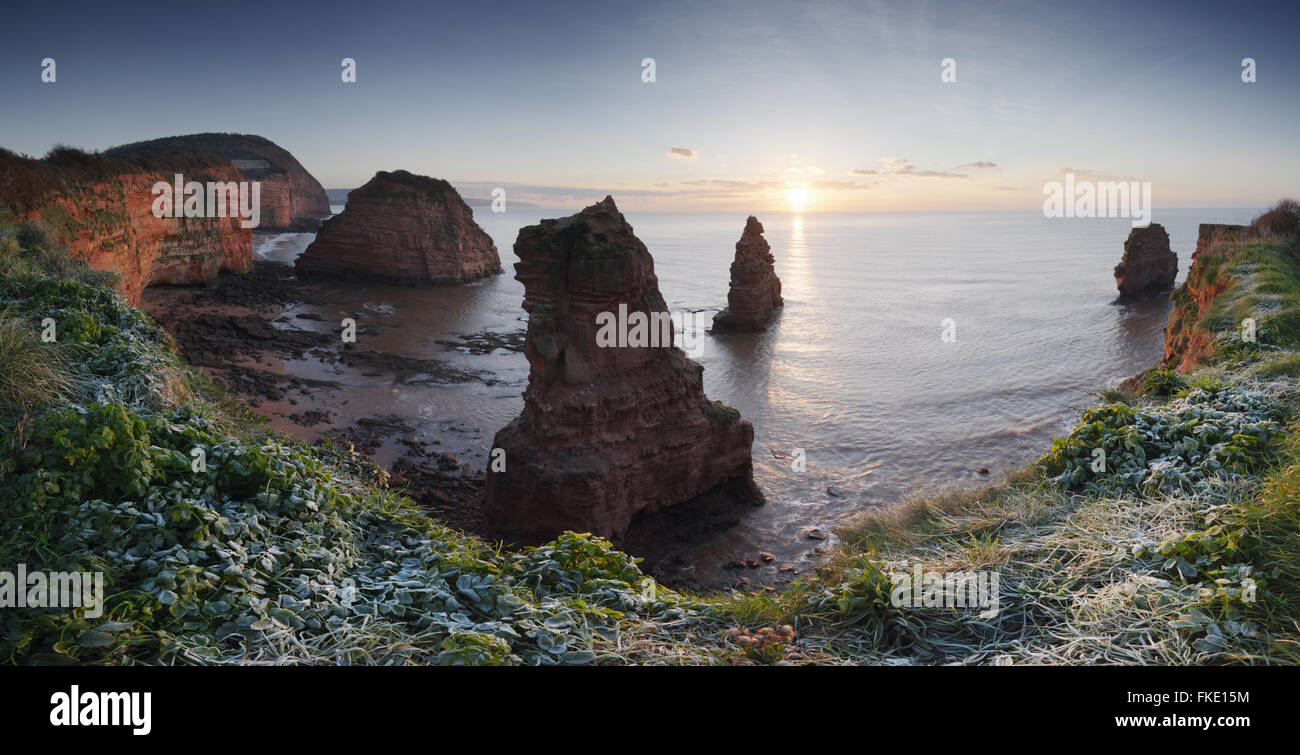 Ladram Bay, Sunrise. Jurassic Coast World Heritage Site. Devon. UK. - Stock Image
