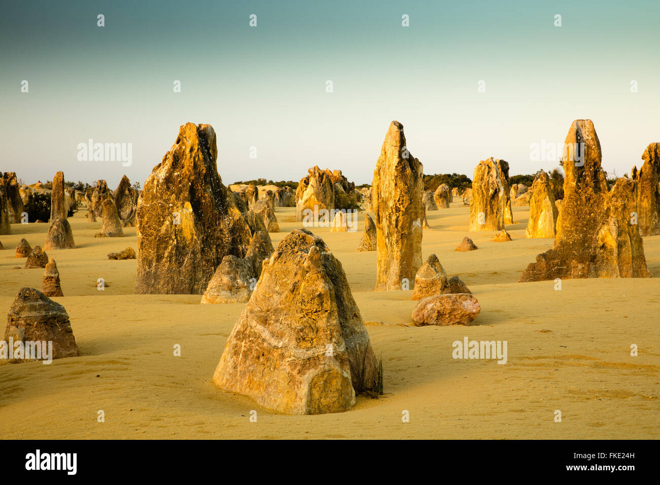 The Pinnacles, limestone formations, Nambung National Park, near Cervantes, Western Australia - Stock Image