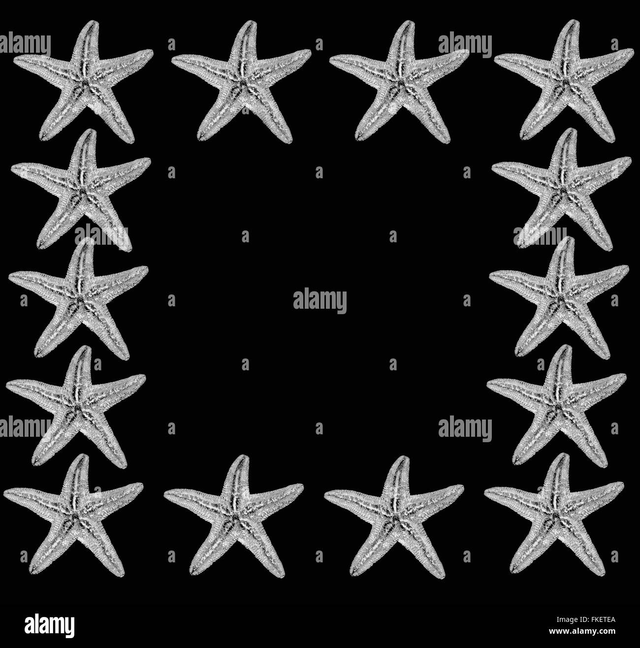 sea stars background - Stock Image