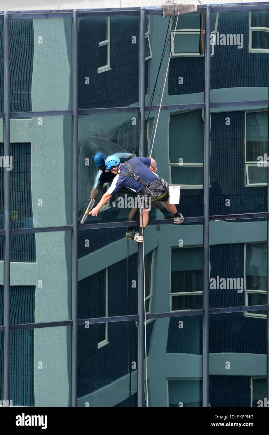 AUCKLAND - MAR 02 2016:Window cleaner works on high rise building.Window cleaning is considered one of the most - Stock Image
