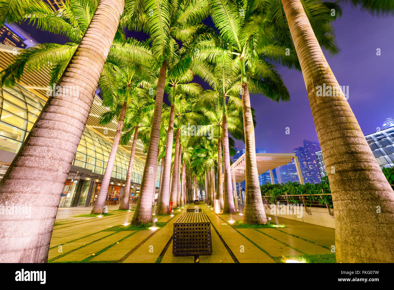 Singapore at the palm tree lined waterfront. - Stock Image