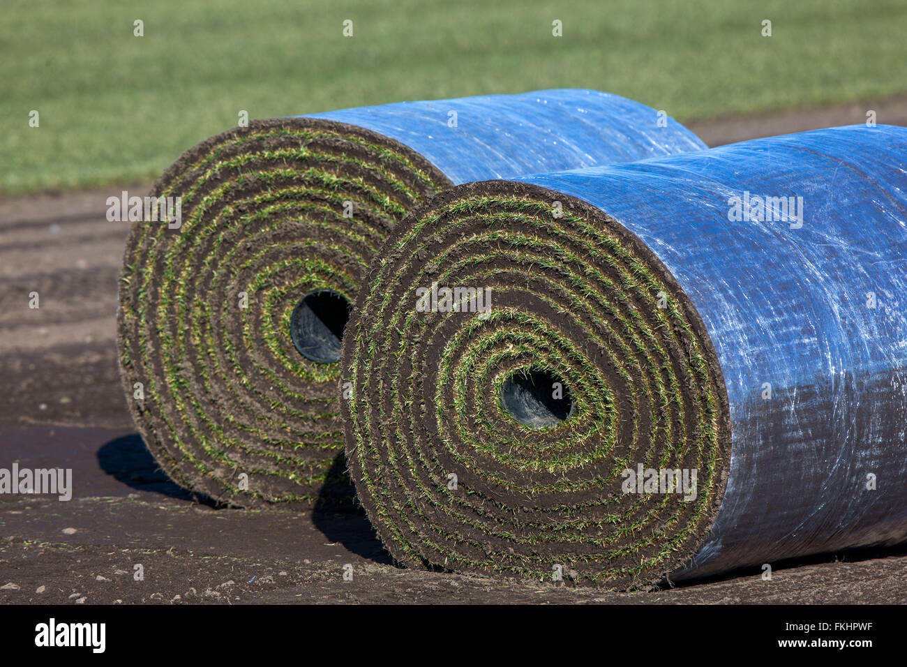 Sod lawn with each 1, 20 by 16 metres long sports turf that weights about a ton on a sod lawn field near Alt Zachun - Stock Image