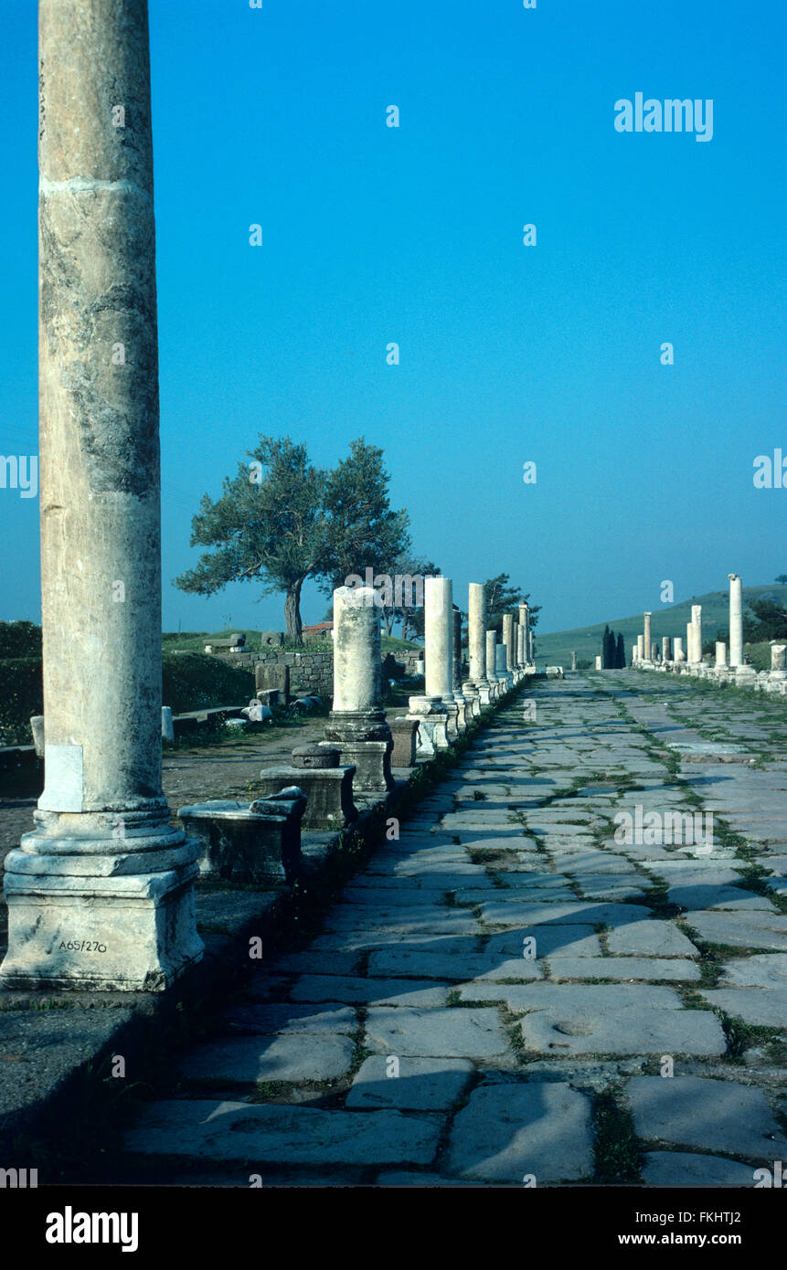 The Roman and Greek Paved and Colonnaded Street, the Via Tecta or Sacred Way, Leading to the Asclepeion Healing - Stock Image