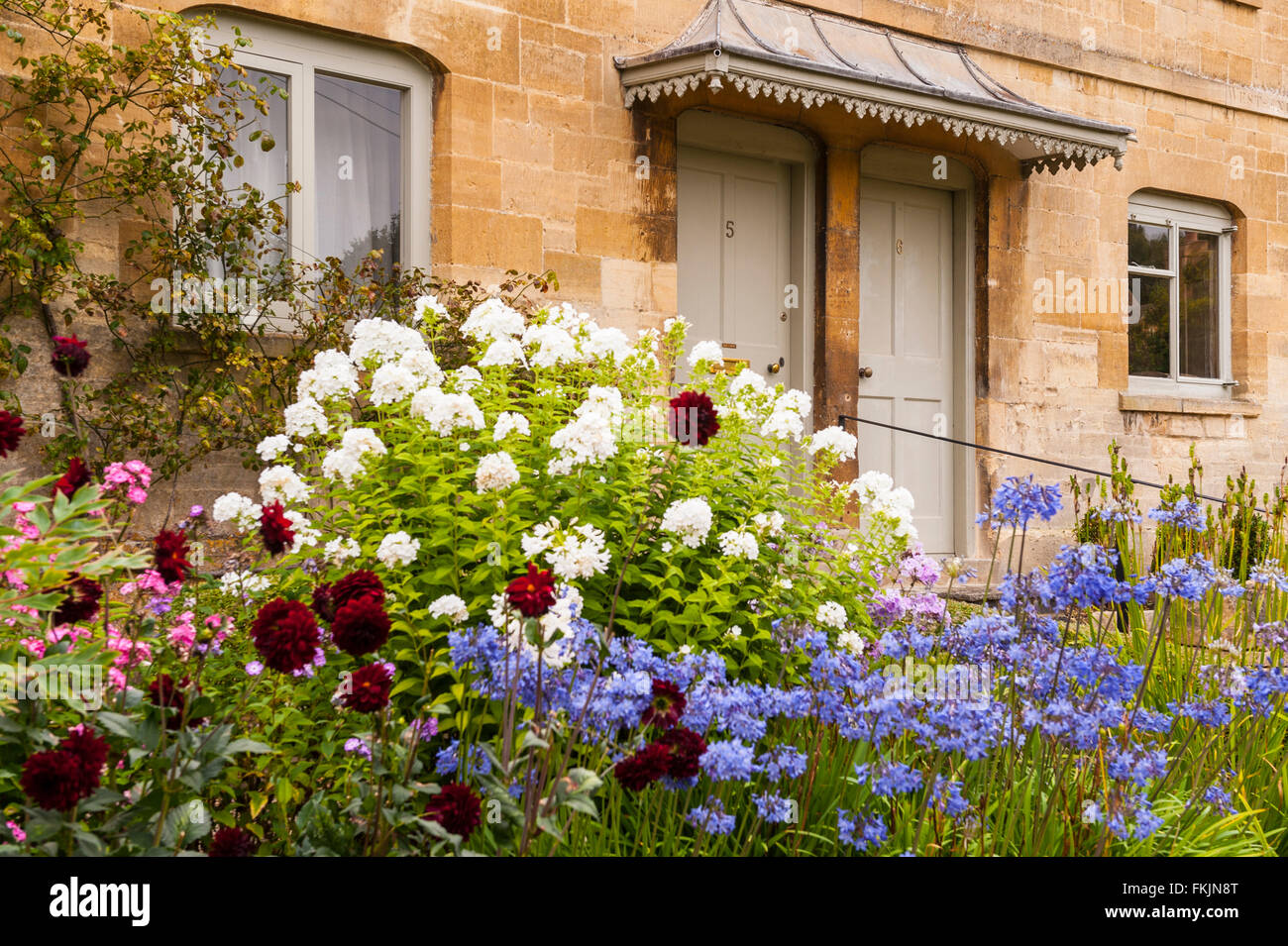 A pair of Cotswold cottages with blooming flowers in the front garden - Stock Image
