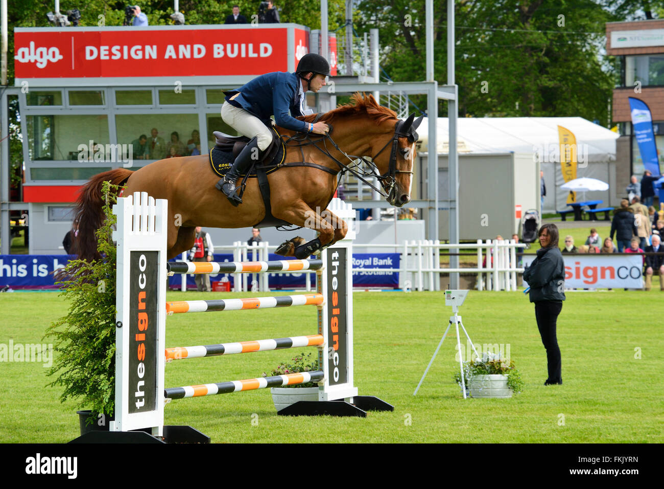 Show jumping at Royal Highland Show 2015, Ingliston, Edinburgh, Scotland, UK - Stock Image