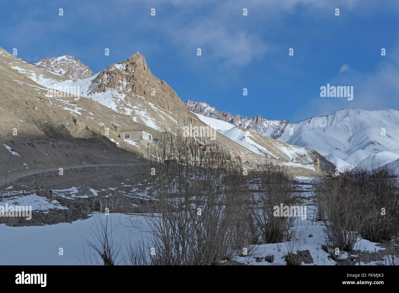 A barren farm in the trans Himalayan cold desert of Ladak during winters - Stock Image
