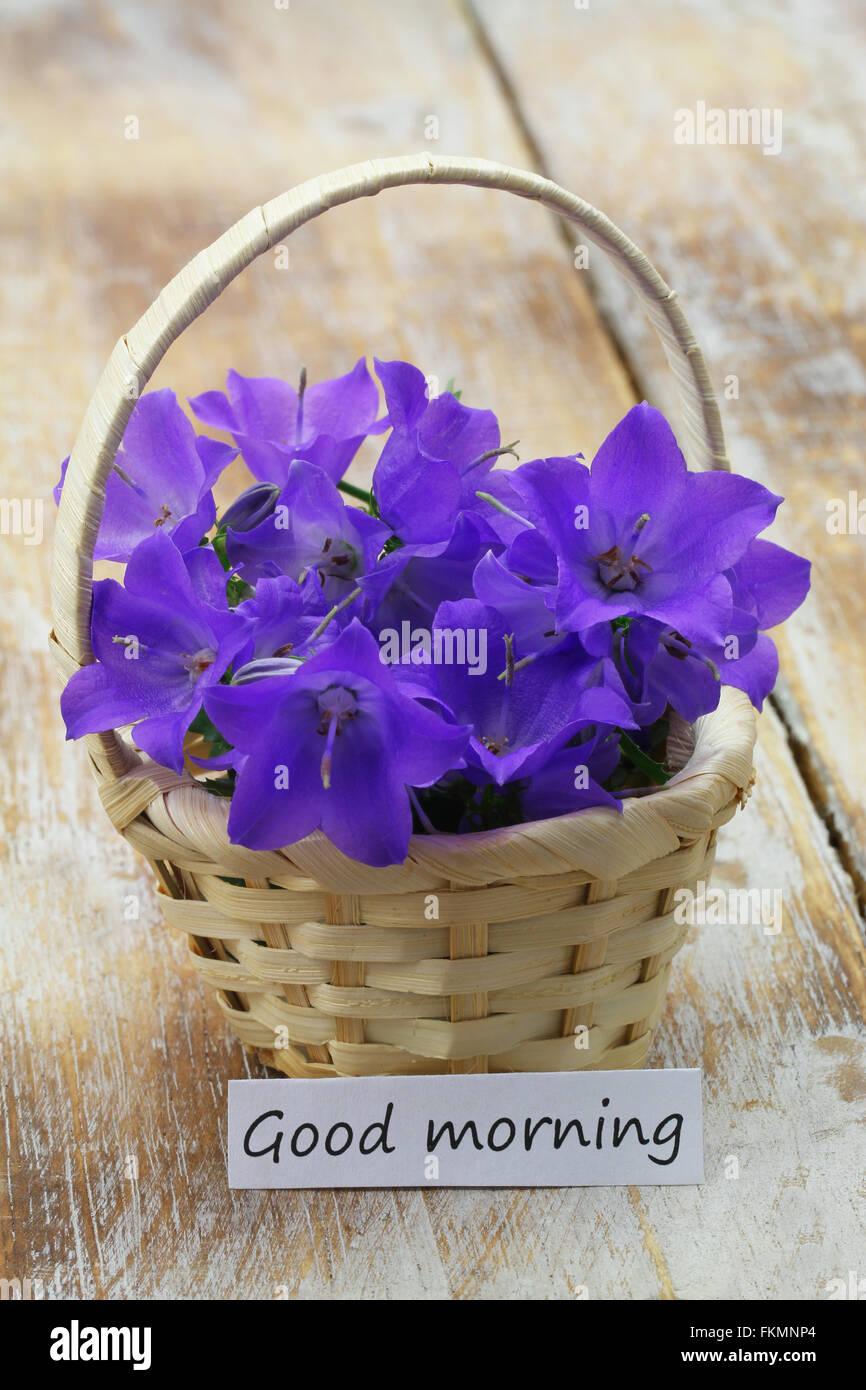 Good Morning Card With Flowers Stock Photos & Good Morning
