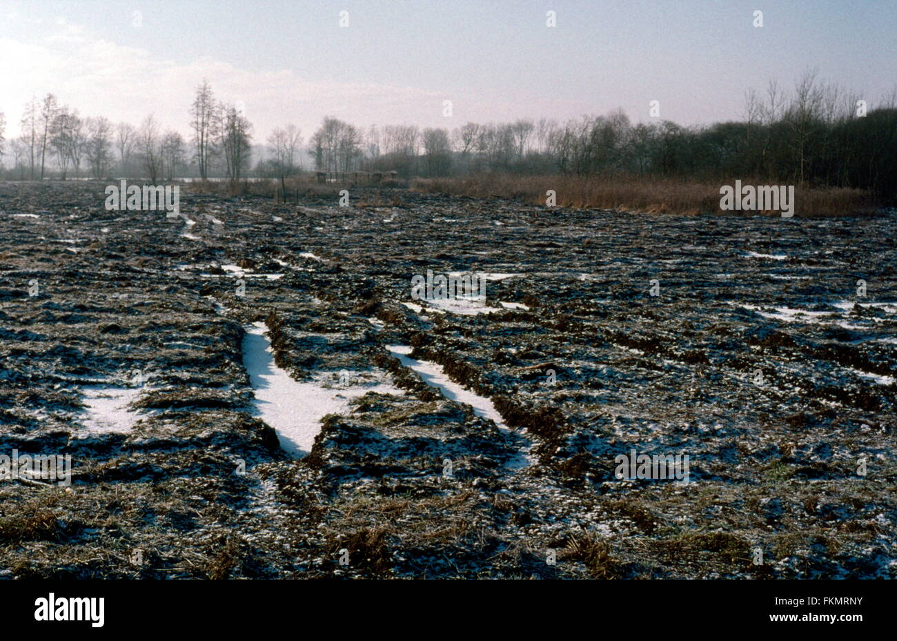 AJAXNETPHOTO. SAILLY LE SEC (NEAR), FRANCE. - SOMME MUD - LANDSCAPE NEAR THE RIVER SOMME, FROZEN PUDDLES AND CHURNED - Stock Image