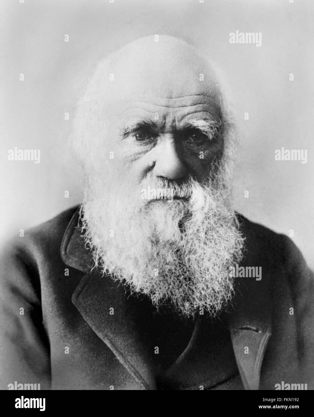 Charles Darwin (1809-1882). Portrait, unknown date. - Stock Image