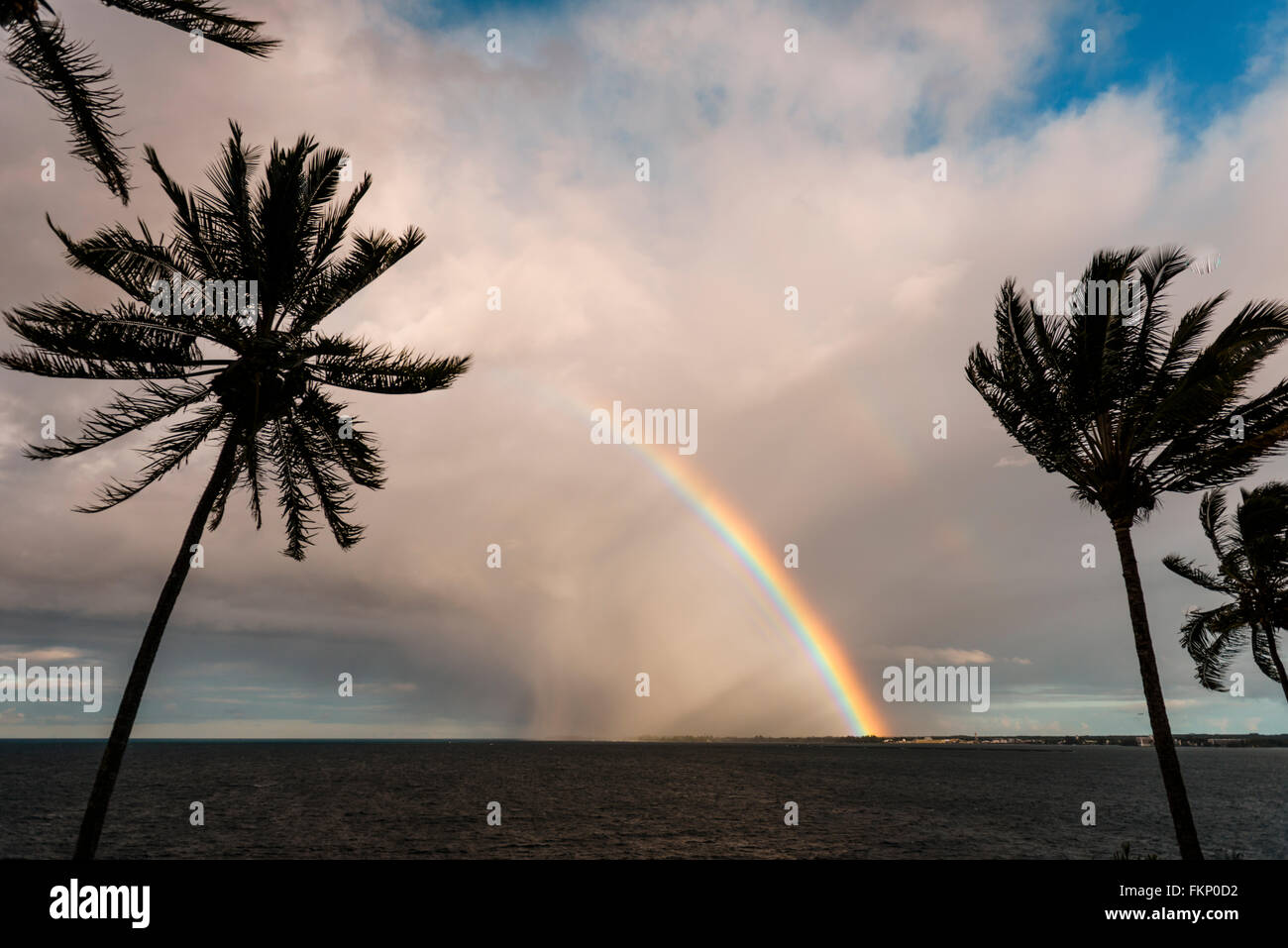 Tropical storm and bright rainbow with palm trees over the ocean in Hilo, Hawaii, USA - Stock Image