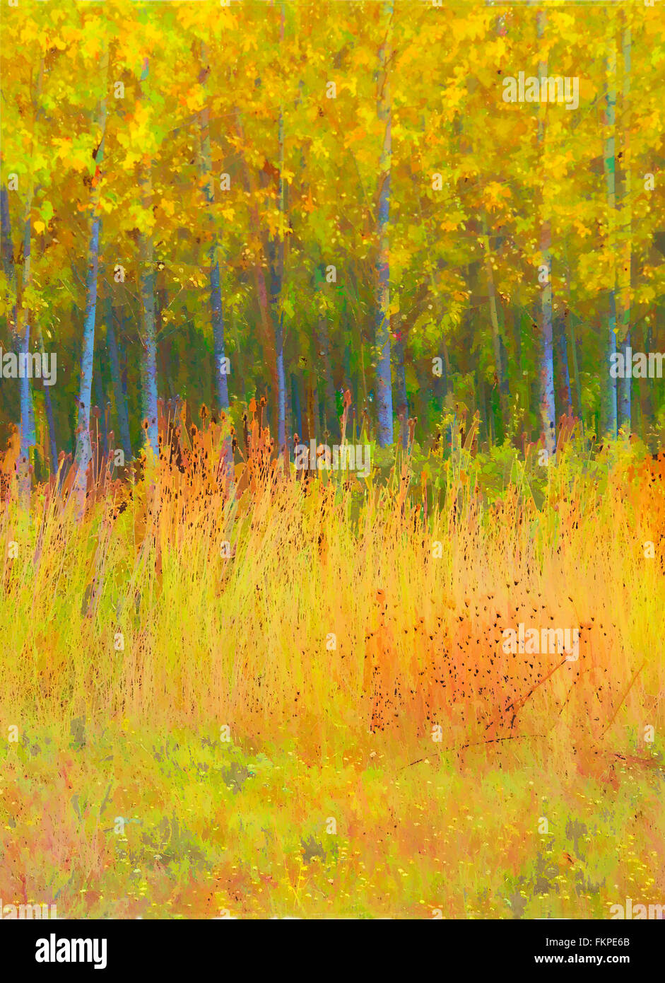 Interpretive digital painting of a stand of alders in the fall. - Stock Image