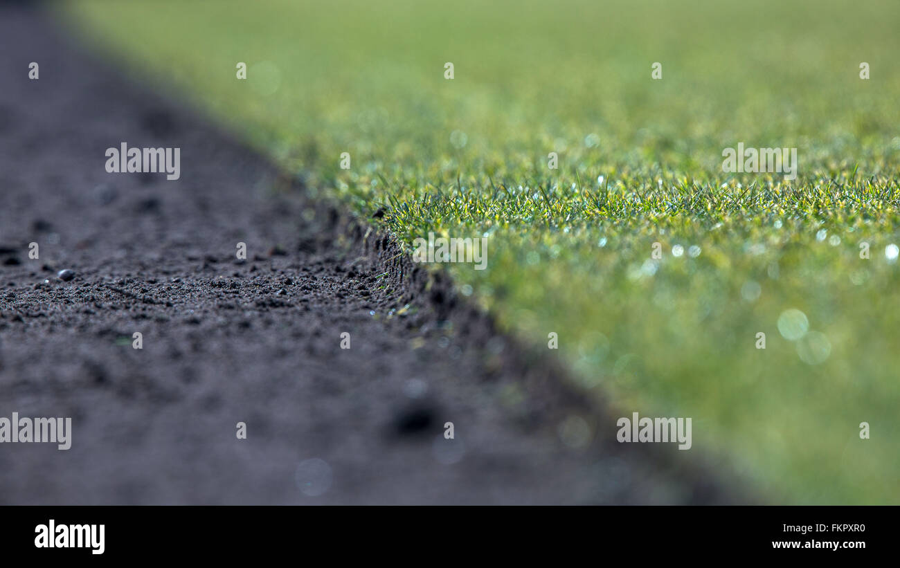 Alt Zachun, Germany. 8th Mar, 2016. A view of a clear cut stretch of piece of finished grown sod lawn near Alt Zachun, - Stock Image