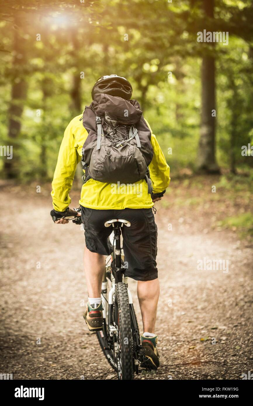Rear view of mature male mountain biker cycling in forest - Stock Image