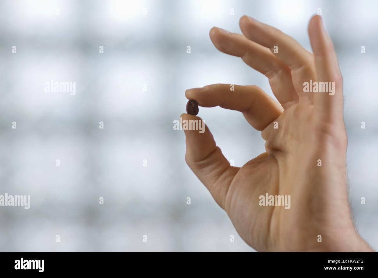 Fingers holding c fee bean - Stock Image