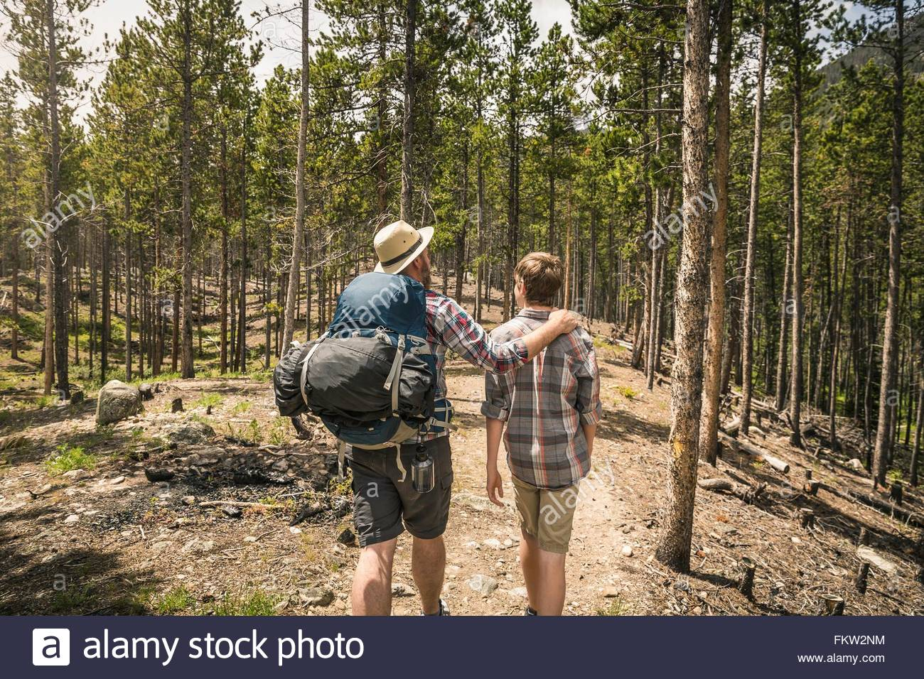 Rear view of father with hand on sons shoulder trekking through forest, Red Lodge, Montana, USA - Stock Image