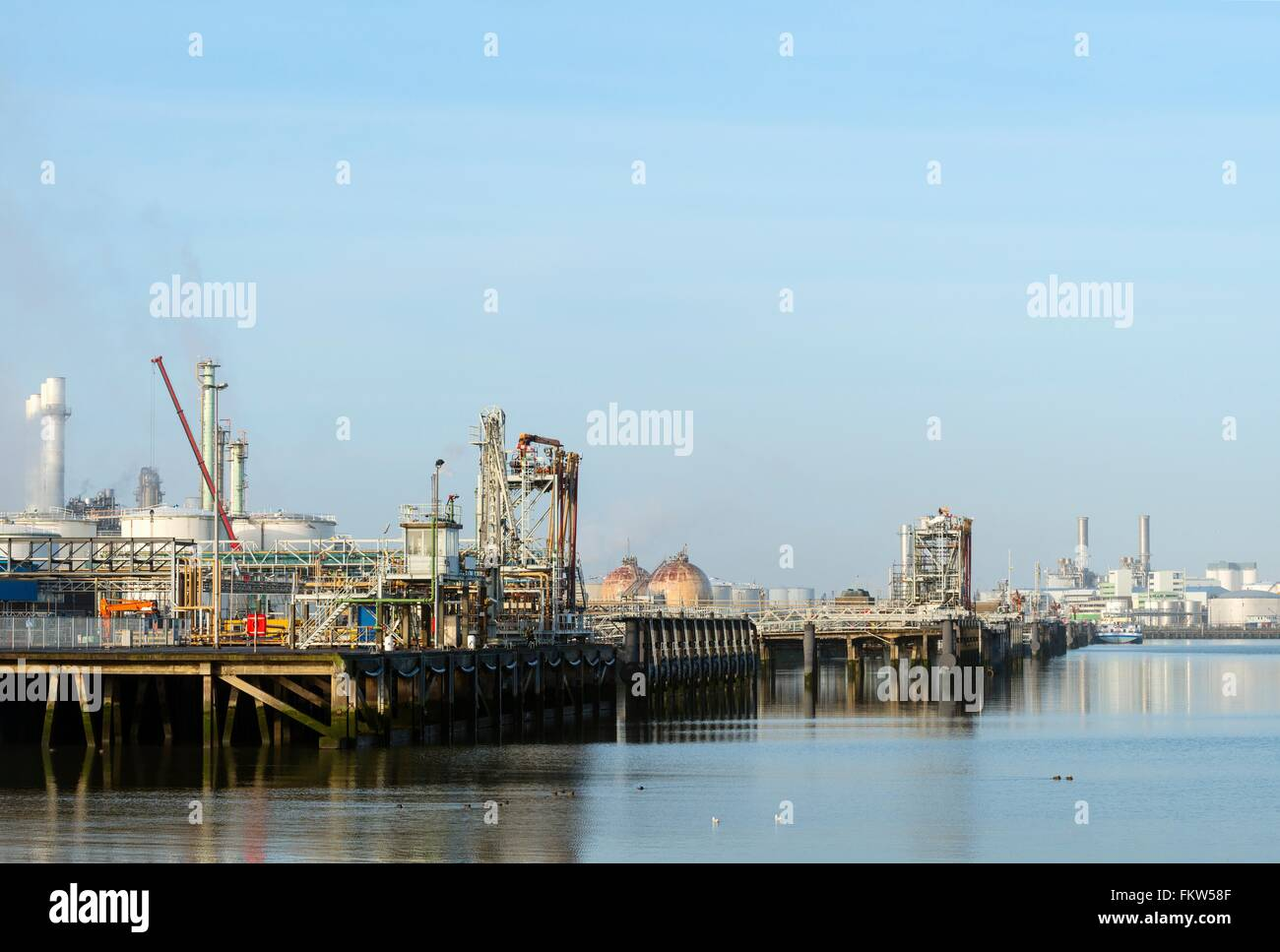 Harbour with oil terminal at refinery, Rotterdam, Zuid-Holland, The Netherlands Stock Photo