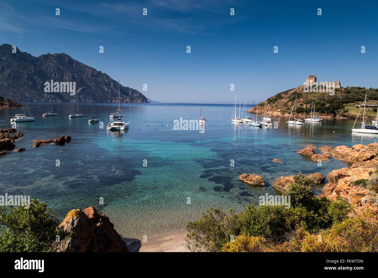 Elevated view   yachts anchored in bay, Girolata, Corsica, France - Stock Image
