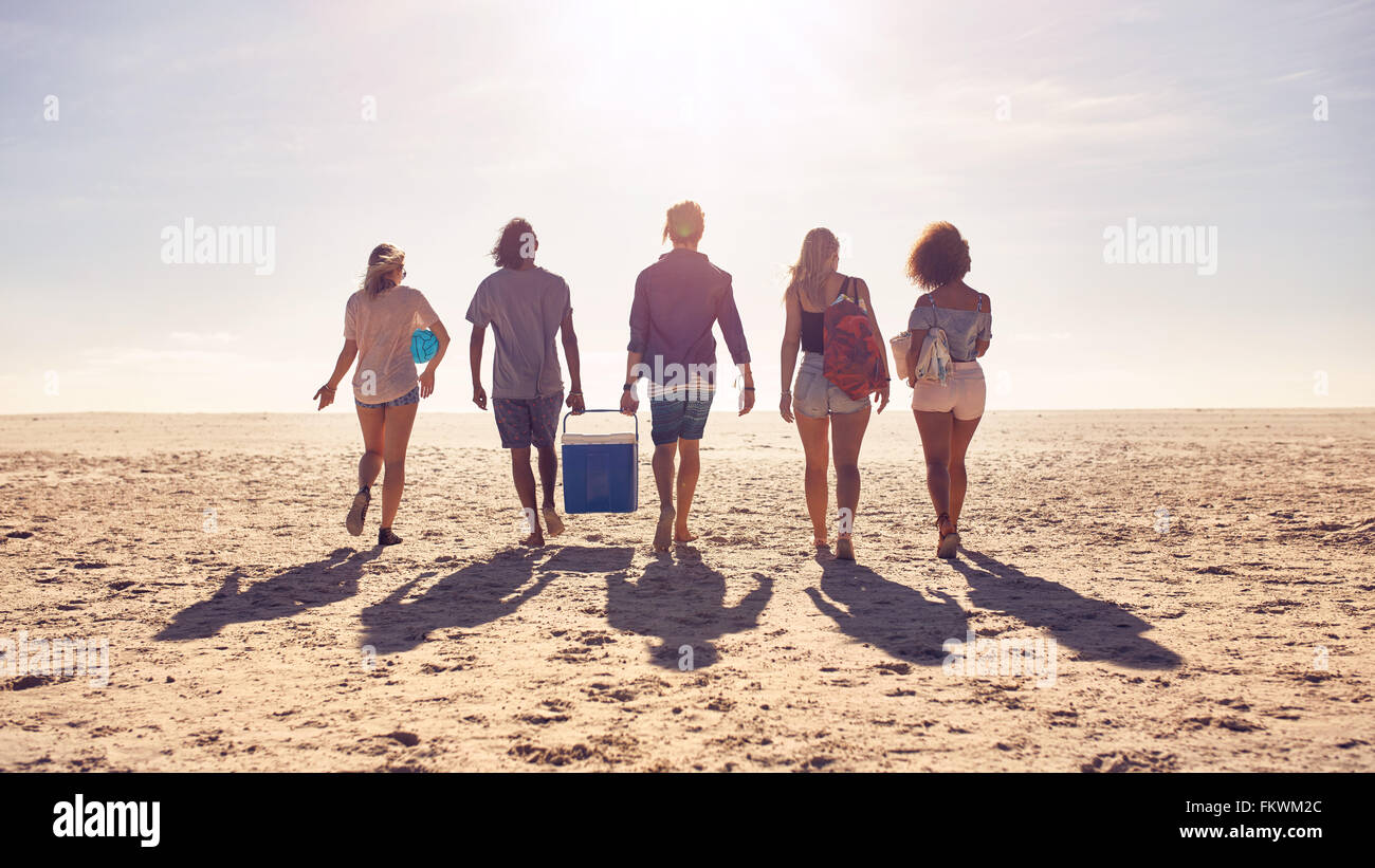 Rear view portrait of group of friends walking on the beach and helping each other while carrying a cooler box. - Stock Image