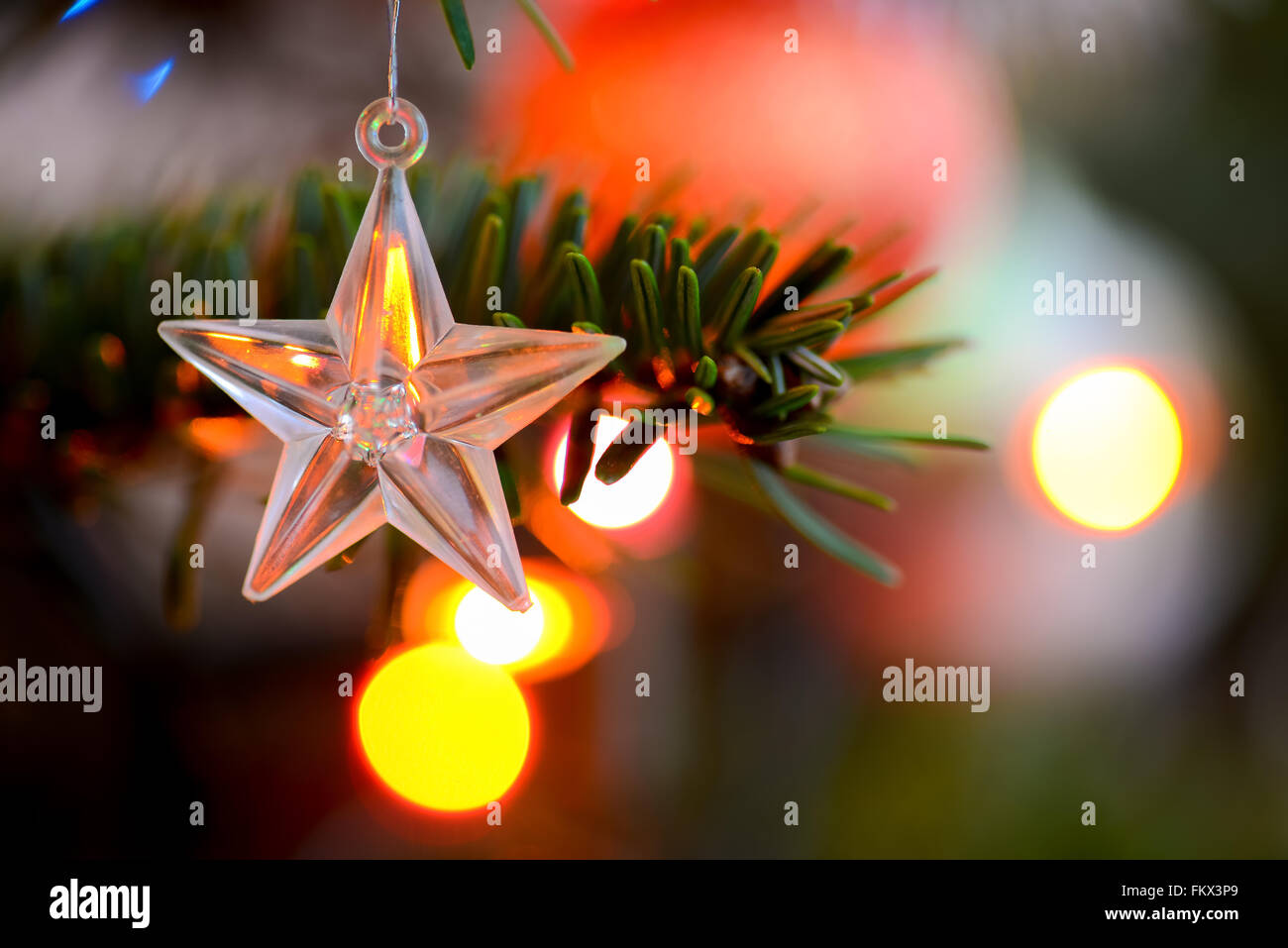 Starlet Christmas decorations hanging in tree - Stock Image