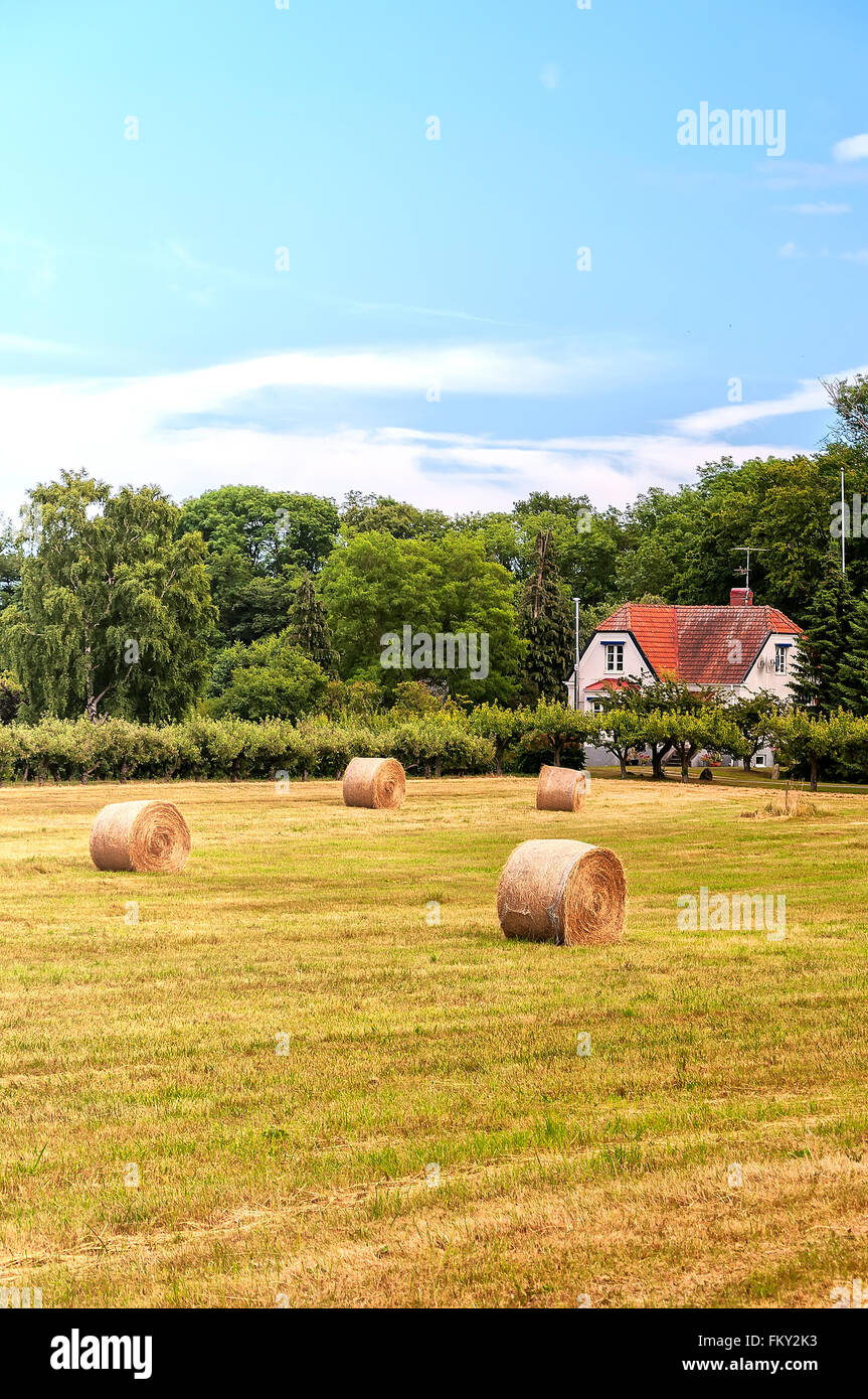 A typical countryside view of swedish farmland in the skane region of the country. - Stock Image