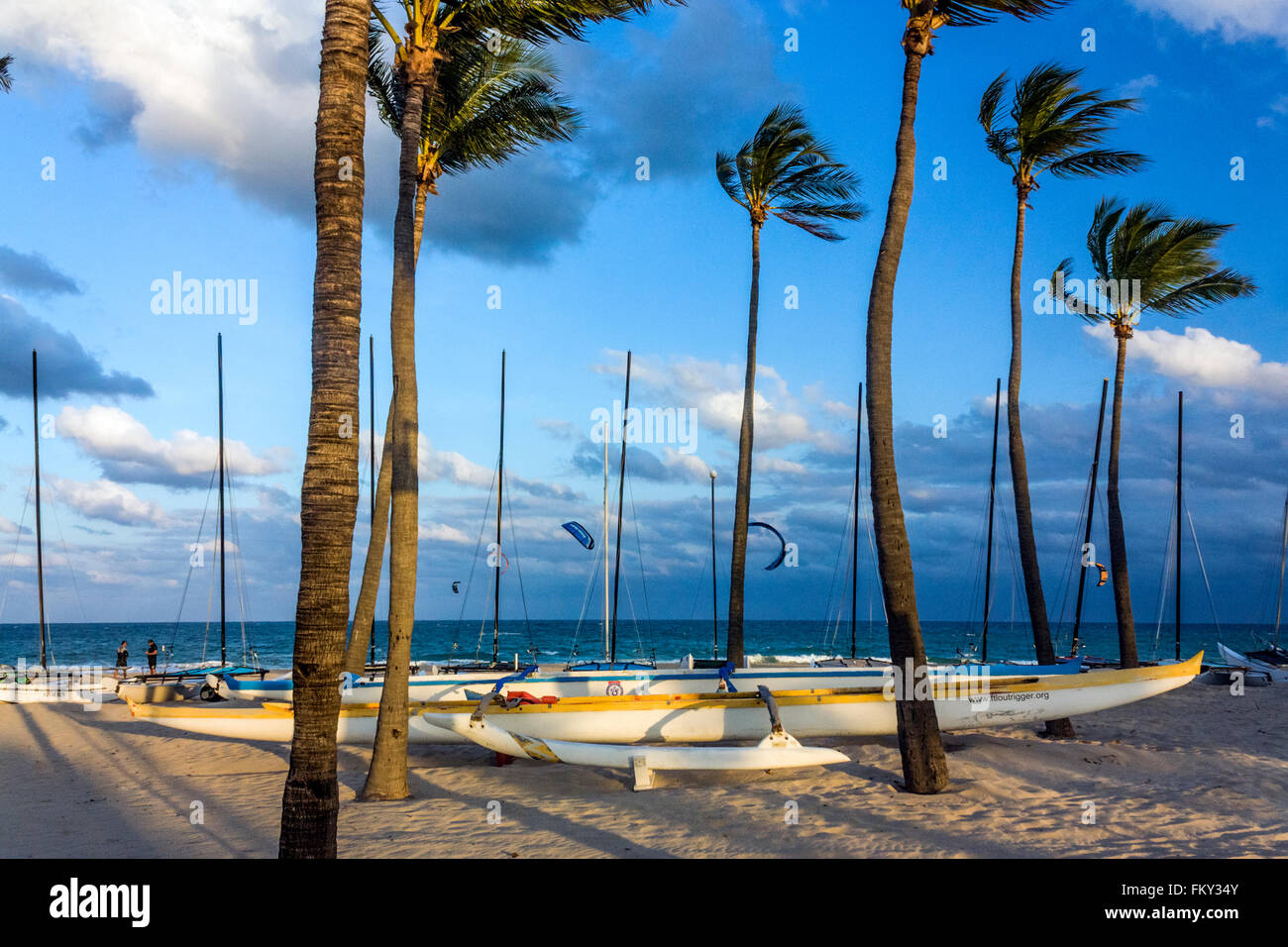 Canoes on the beach, Fort Lauderdale Stock Photo