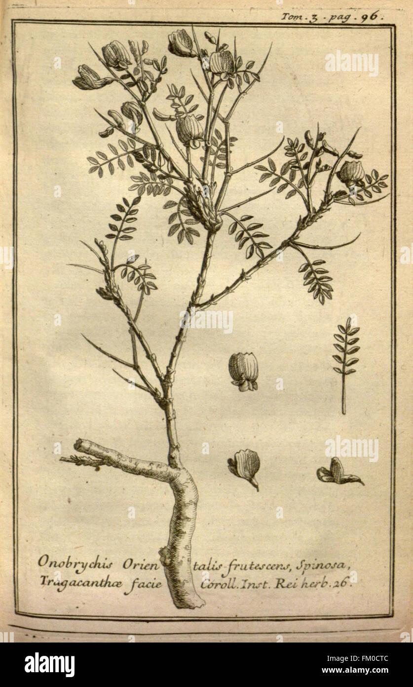 Relation d'un voyage du Levant (Plate 12) - Stock Image