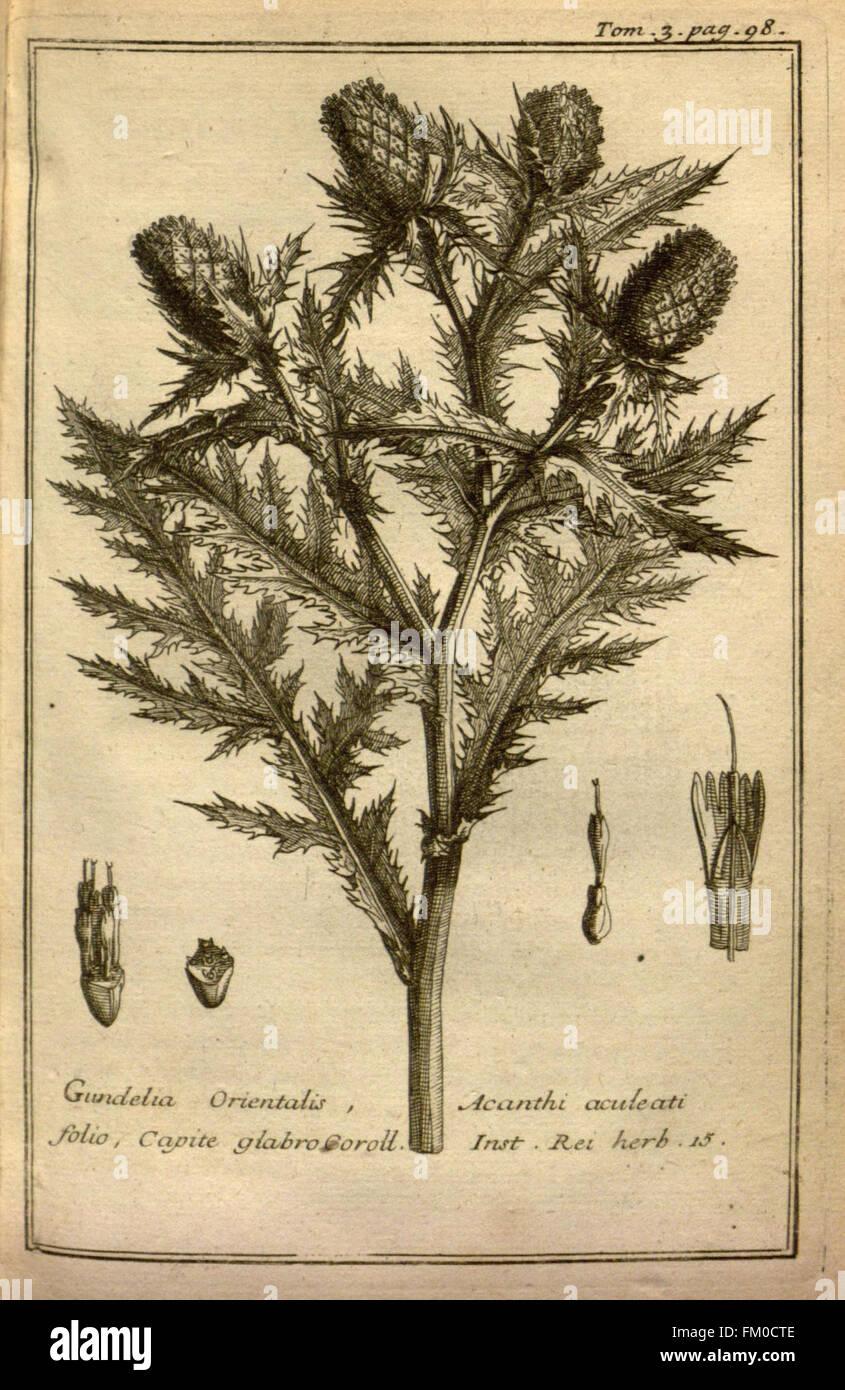 Relation d'un voyage du Levant (Plate 13) - Stock Image
