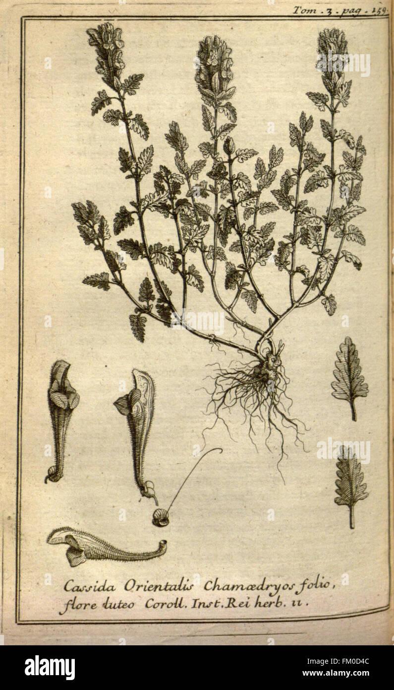 Relation d'un voyage du Levant (Plate 24) - Stock Image