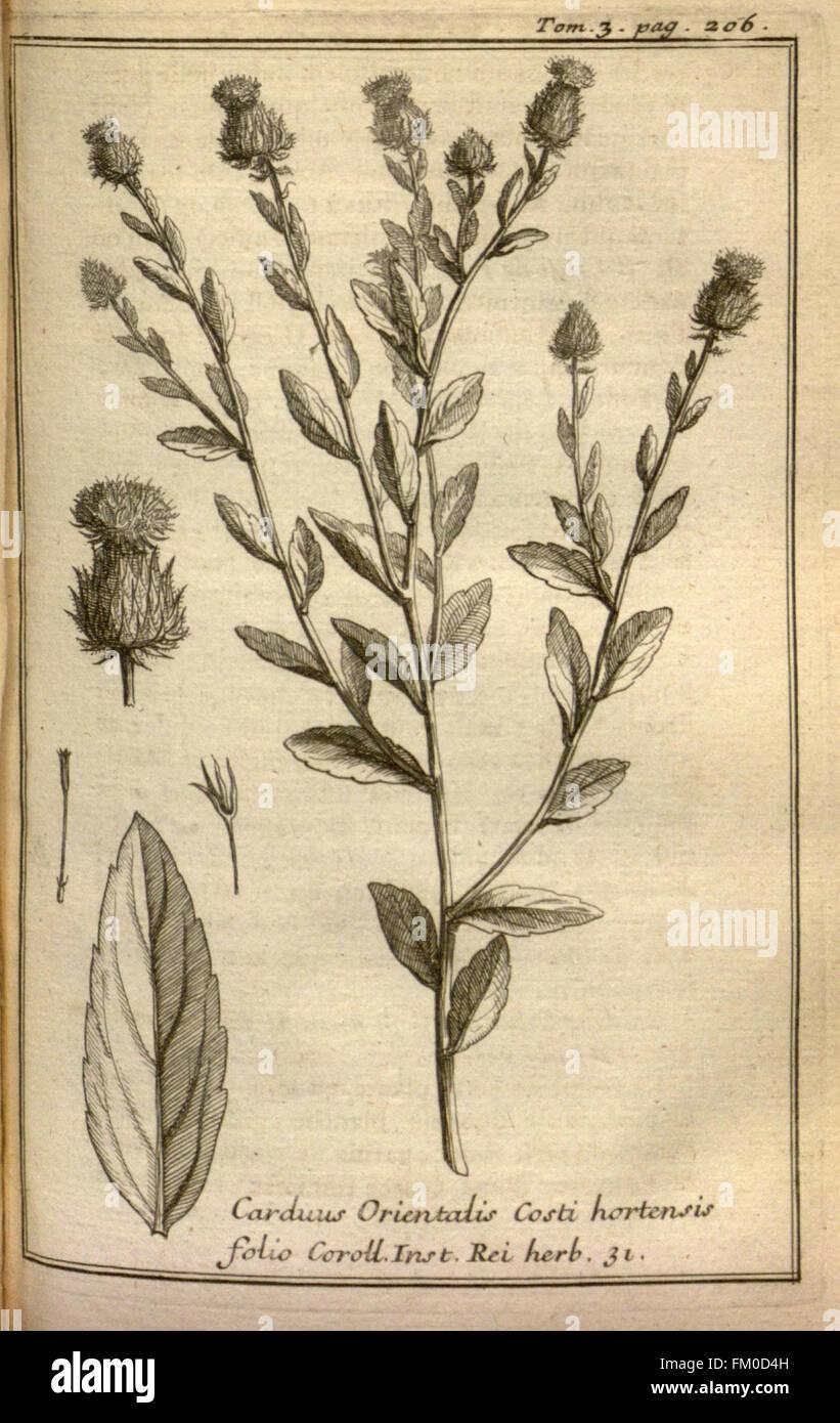 Relation d'un voyage du Levant (Plate 29) - Stock Image