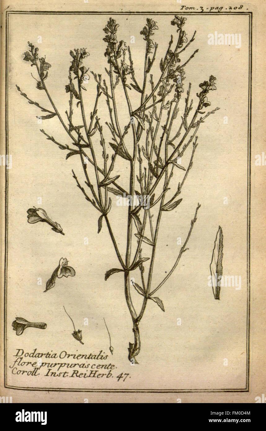 Relation d'un voyage du Levant (Plate 30) - Stock Image